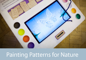 Painting Patterns for Nature